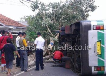 Hantam Becak, Bus Budiman Terguling di Banjar