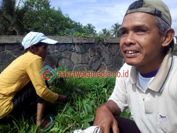 Meski tak bisa melihat, Yanto ditemani istrinya tiap hari rajin mencari rumput untuk hewan ternak majikannya. ( dezaf photo )