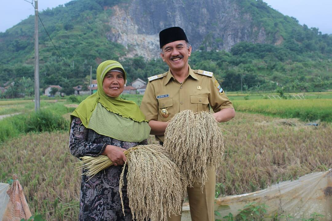 Hasil Pertanian Kabupaten Bandung Barat