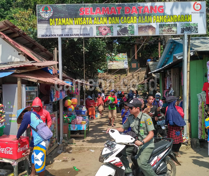 Pengunjung Observasi Cagar Alam Selama Lebaran Mencapai Puluhan Ribu