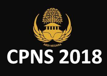 BKN Antisipasi Serangan Hacker Akun Pelamar CPNS