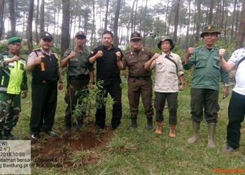 Jaga Hutan Lindung, Perhutani KPH BDU Gelar RHL Gabungan