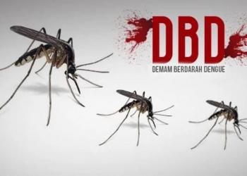 Cegah DBD, Dinkes Kabupaten Tasik Imbau Lakukan 3M