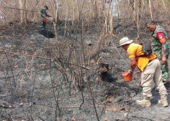 Karena Puntung Rokok, Kebun Bambu Empat Hektare Ludes